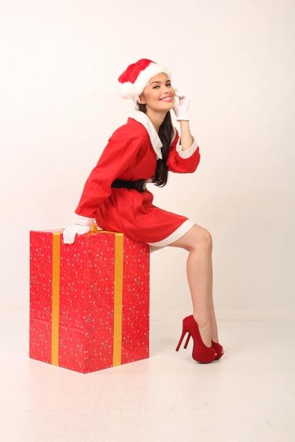 サンタさんにプレゼント、何おねがいしよう?
