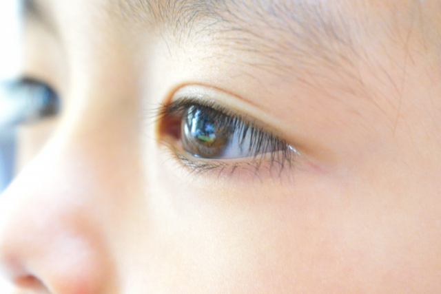子どもの未来を考えて育てる